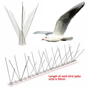 cheapest seagull spike supplier online