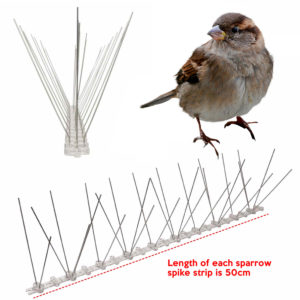 cheapest sparrow bird spike supplier online