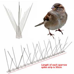 cheapest sparrow bird spike supplier online