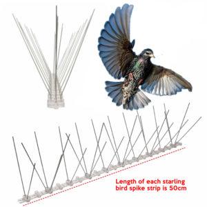 cheapest starling bird spike supplier online