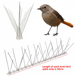 cheapest wren bird spike supplier online