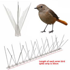 cheapest wren bird spike supplier online