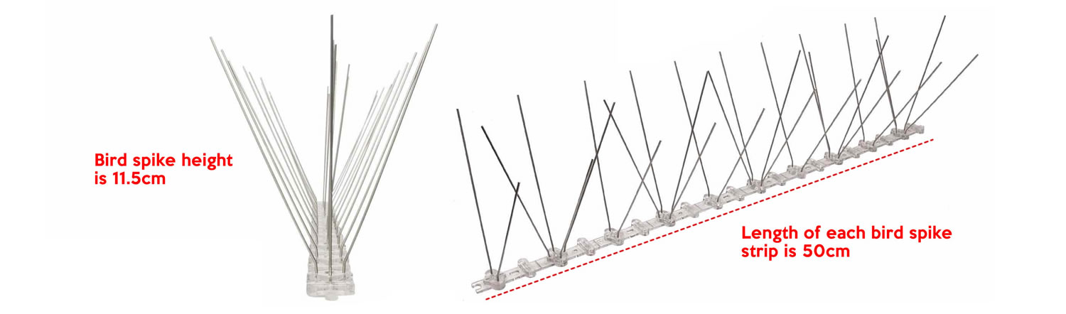 where to buy stainless steel bird spikes online